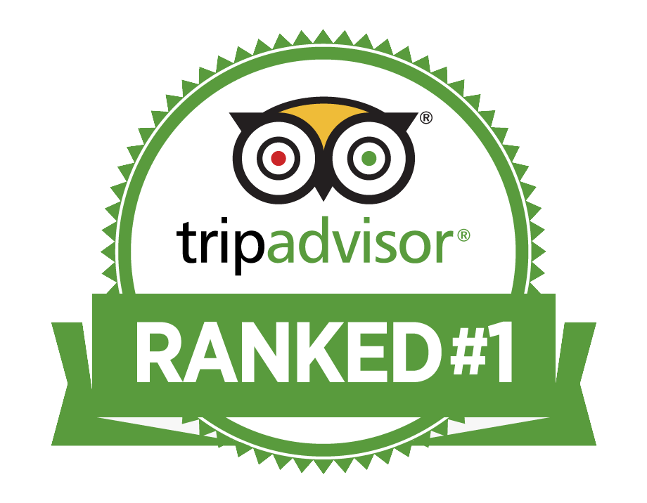 Ranked Number 1 on Trip Advisor for Tours in Goodland, FL